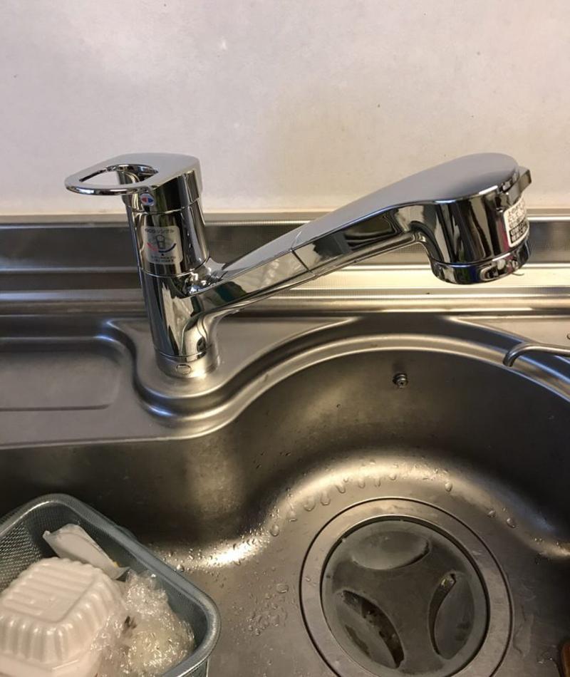 Vòi rửa bát ToTo TKGG32EBS